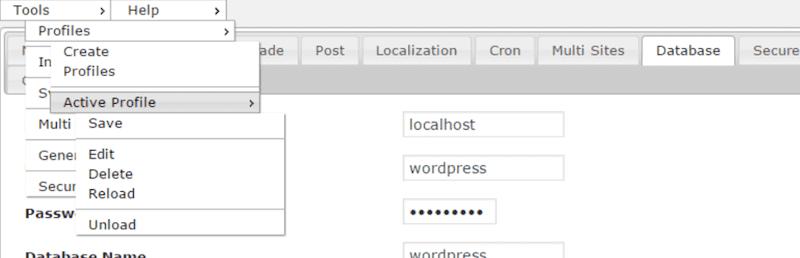WP-Config File Editor Plugin (1)