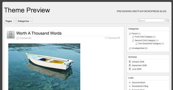 theme in wordpress