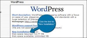 Fantastico WordPress Installation