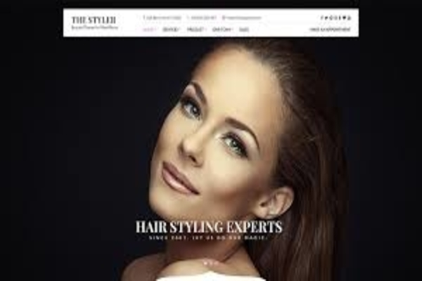 Styler WordPress theme