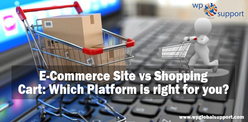 E-Commerce Site vs Shopping Cart: Which Platform is right for you?