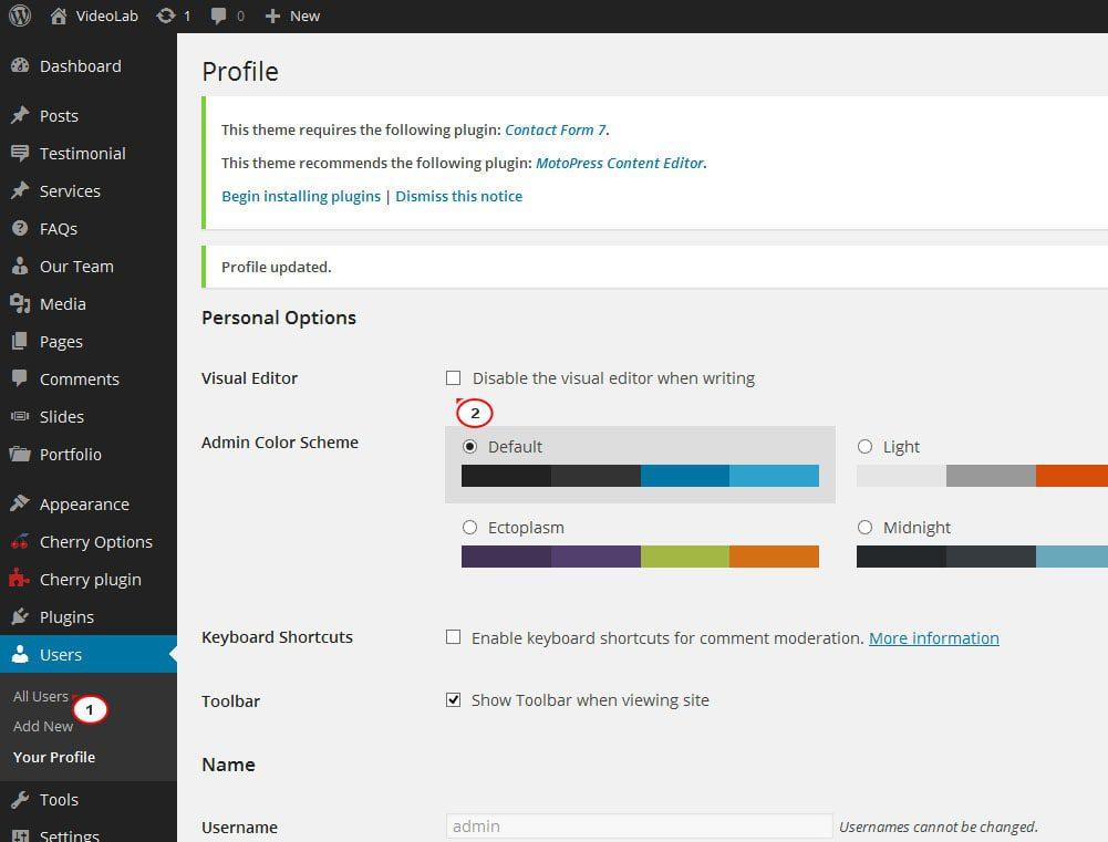 Visual Editor Mode in WordPress-min