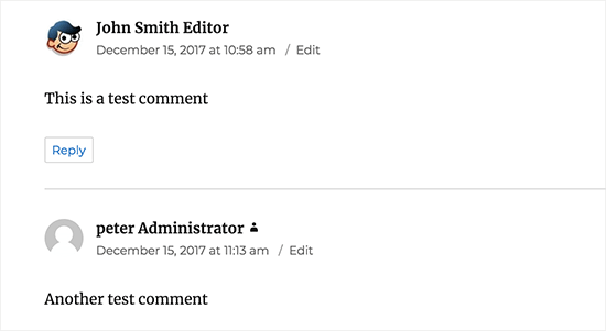 How to Add User Role Label Next to Comments in Wordpress? Steps view.