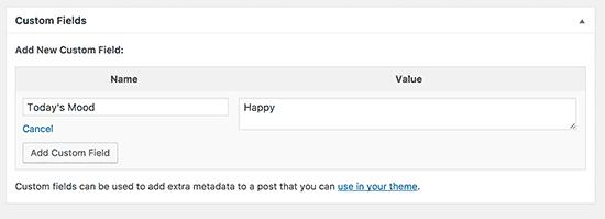 Custom Meta Box in WordPress