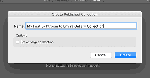 envira gallery collection