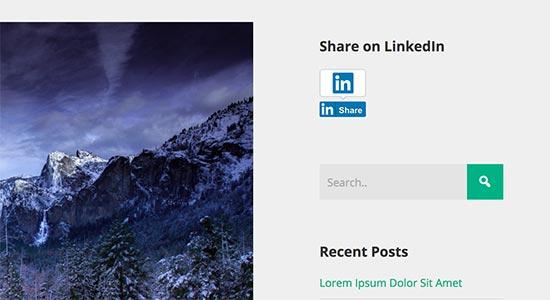 linkedin sidebar, Add LinkedIn Profile in WordPress