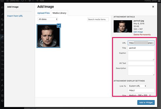 Add an Image Using The Image Widget in WordPress - 2