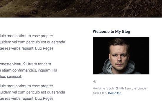 Add an Image Using The Image Widget in WordPress 5