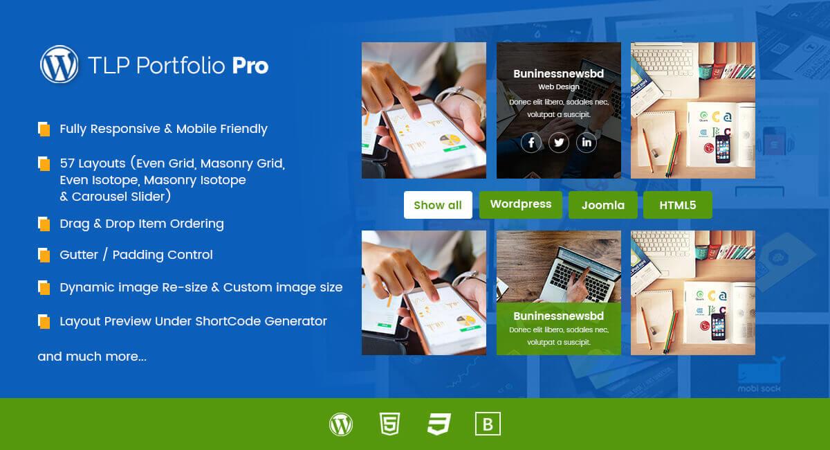 portfolio wordpress plugin